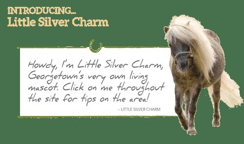 littlesilvercharm-homenew.png