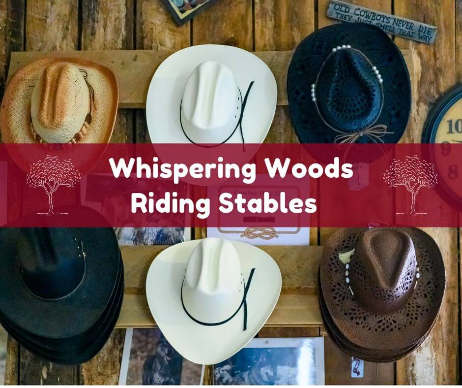 Whispering Woods Riding Stable